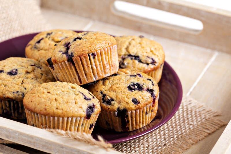 Zdrowi czarna jagoda banana muffins obrazy stock
