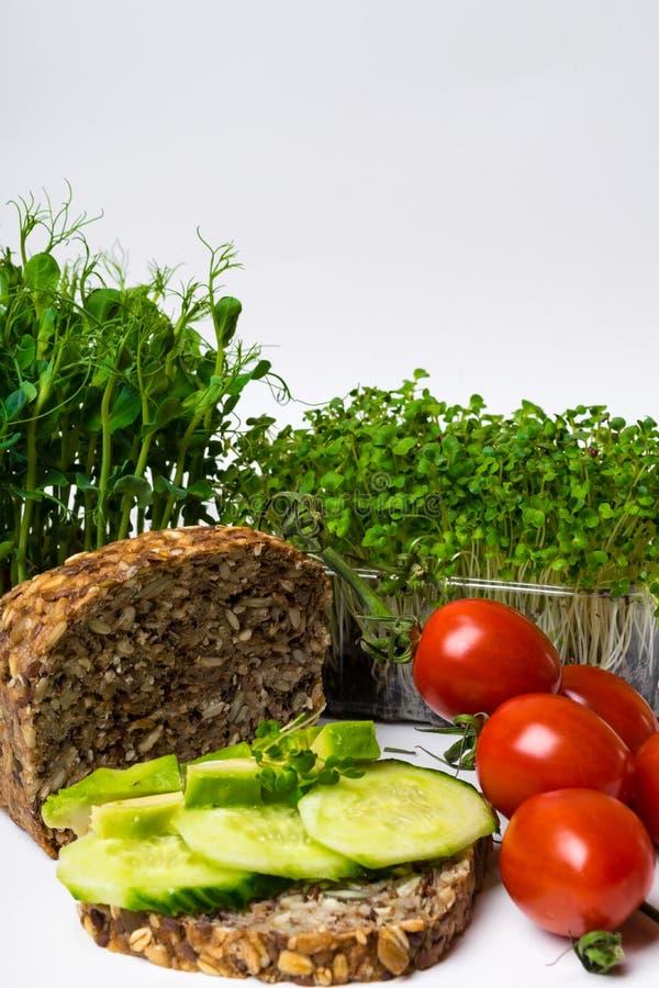 zdrowi weganinów hamburgery z avocado, zieleń kiełkują, pomidory, kopii przestrzeń Jarosz, czysty łasowanie, alcaline diety jedze fotografia stock