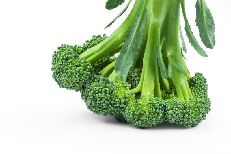 Zdrowi Zieleni Organicznie Surowi brokuły odizolowywający nad białym tłem Florets Gotowi dla Gotować karmowy świeży japoński sała zdjęcie royalty free