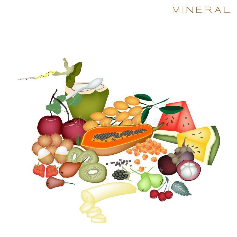 Zdrowie i odżywiania korzyści Kopalni Foods ilustracja wektor