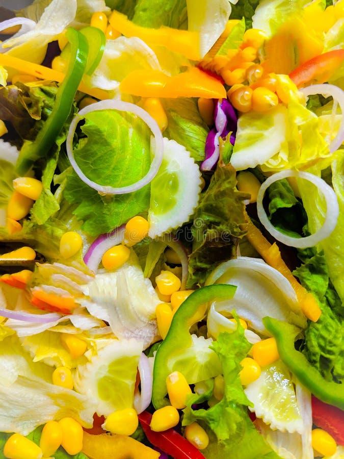 Zdrowy, świeżo spożywany, zmieszany, zielony sałat zdjęcia royalty free