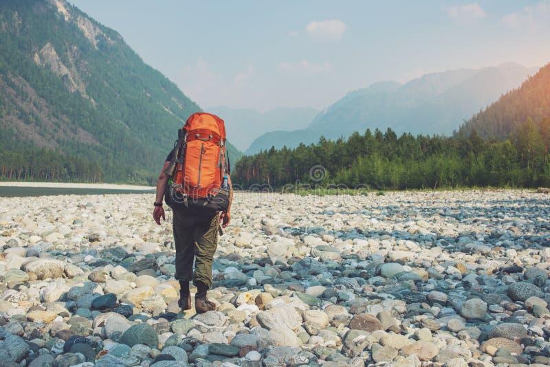Zdrowy Aktywny mężczyzna wycieczkuje w pięknym halnym lesie w lecie w słońcu z plecakiem zdjęcia royalty free