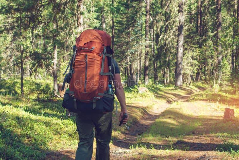 Zdrowy Aktywny mężczyzna wycieczkuje w pięknym halnym lesie w lecie w słońcu z plecakiem zdjęcia stock