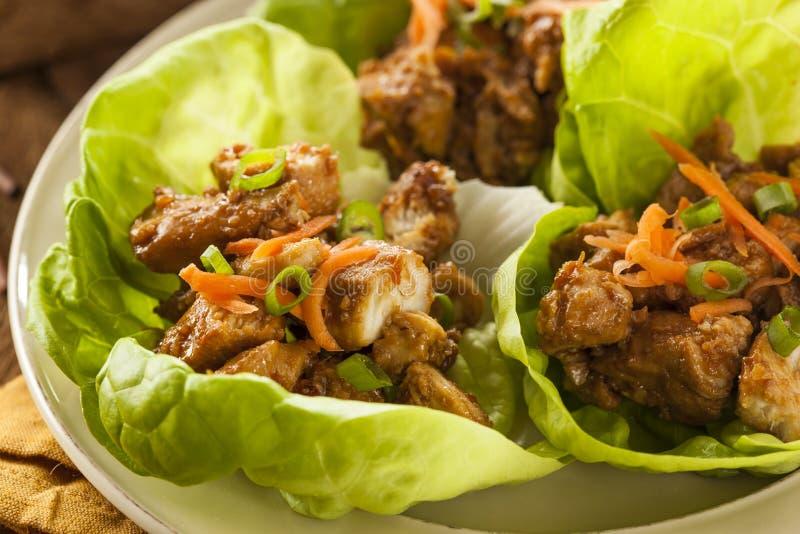 Zdrowy Azjatycki kurczak sałaty opakunek zdjęcie stock