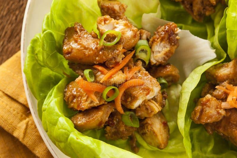 Zdrowy Azjatycki kurczak sałaty opakunek fotografia stock