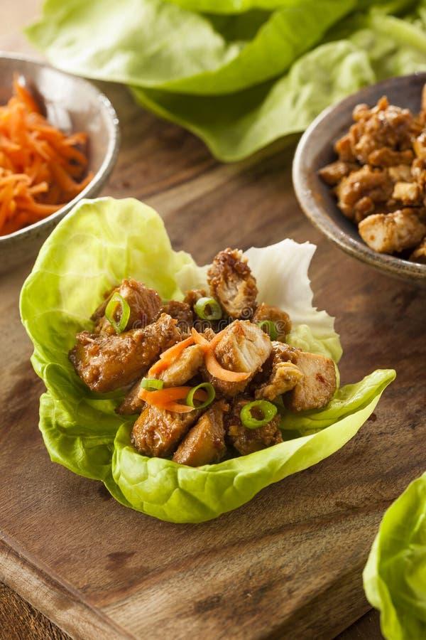 Zdrowy Azjatycki kurczak sałaty opakunek obrazy royalty free