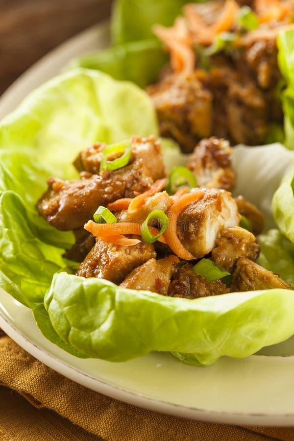 Zdrowy Azjatycki kurczak sałaty opakunek obraz stock