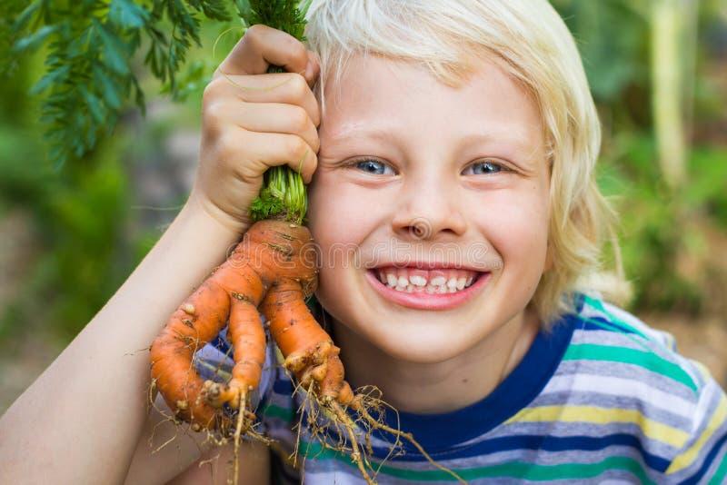Zdrowy dziecko trzyma niezwykłej wyprodukowany lokalnie marchewki w ogródzie zdjęcia stock