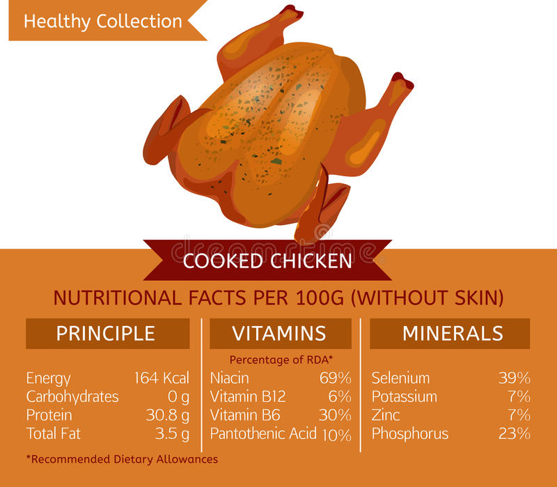 Zdrowy Inkasowy mięso ilustracja wektor