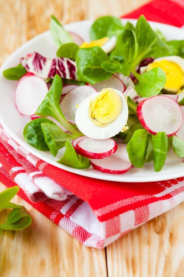 Zdrowy jedzenie - świeża sałatka z jajkiem obraz royalty free