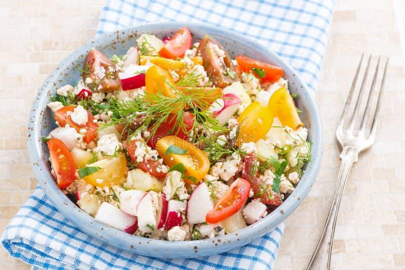 Zdrowy jedzenie - sałatka z świeżymi warzywami i chałupa serem fotografia stock