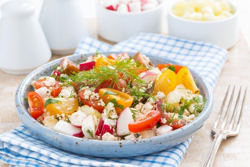 Zdrowy jedzenie - sałatka z warzywami i chałupa serem zdjęcia royalty free