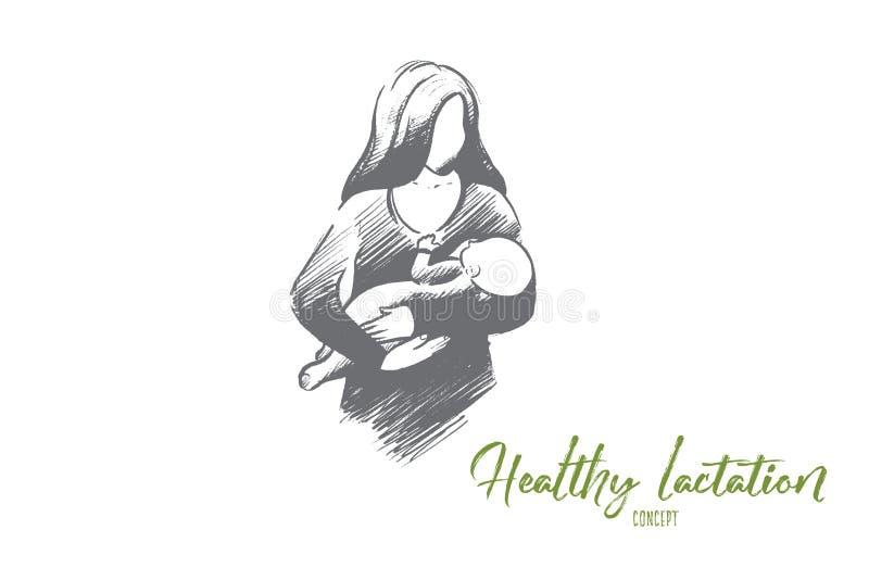 Zdrowy laktacyjny pojęcie Ręka rysujący odosobniony wektor ilustracja wektor