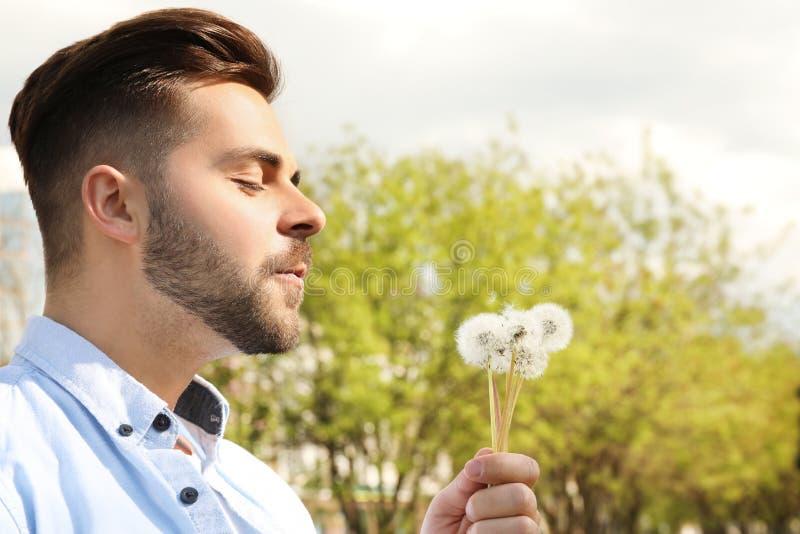 Zdrowy młodego człowieka dmuchanie na dandelions Alergia uwalnia poj?cie obrazy stock