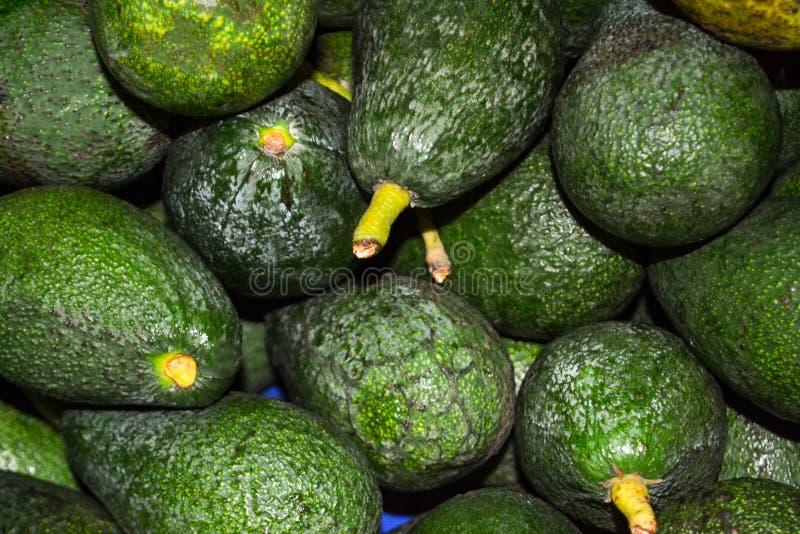 Zdrowy owocowy avocado Przy rynkiem kłama wiązkę zdjęcie royalty free