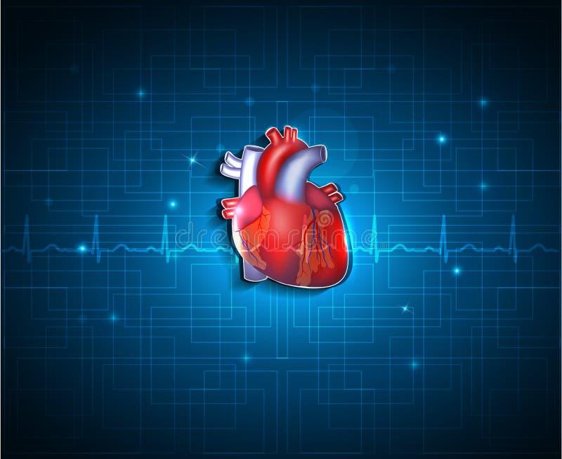 Zdrowy serce na błękitnym technologii tle royalty ilustracja