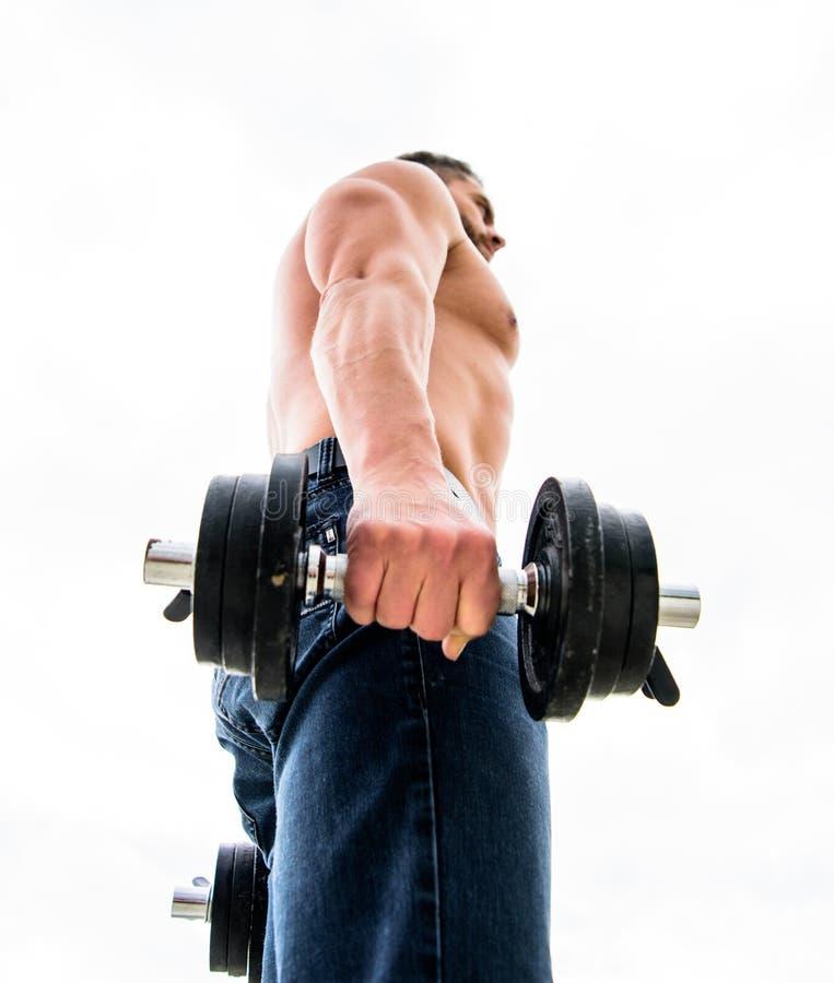 Zdrowy Styl ?ycia cia?o sportowego Dumbbell gym Sprawno?ci fizycznej i sporta wyposa?enie mężczyzny sportowa weightlifting steryd obrazy royalty free