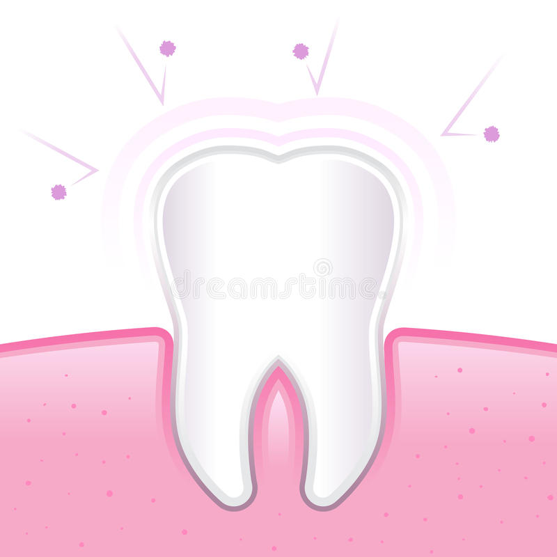 Zdrowy ząb I dziąsło Ochraniający Od zarazków ilustracja wektor