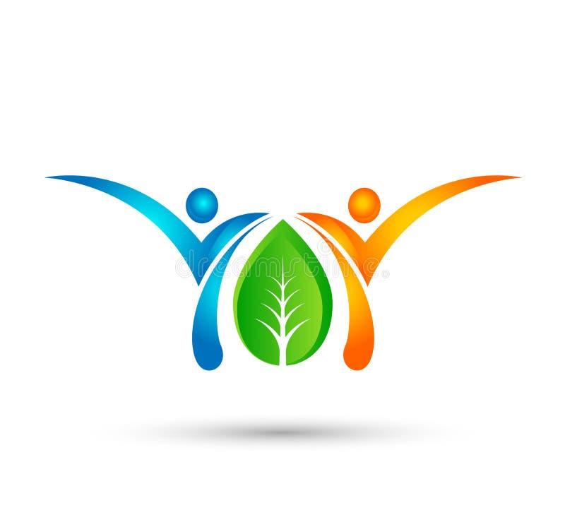 Zdrowy zielony pojęcie logo, eco życia logo ludzie, opieka, ludzie dba szablon Sprawność fizyczna, fizjoterapia wektor royalty ilustracja