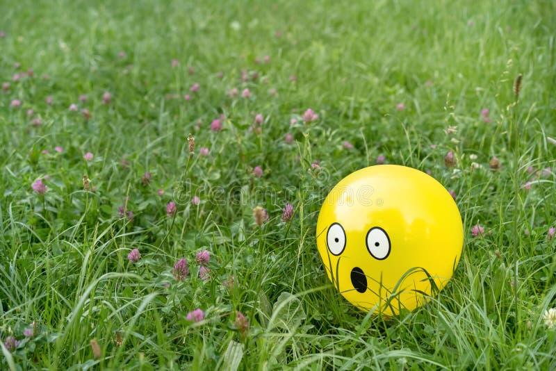 Zdziwiona emoji twarz na żółtym balonie kłaść wśród łąki trawy i kwiatów obraz stock