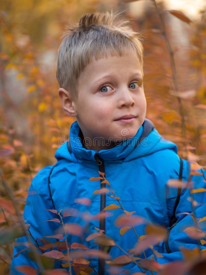 Zdziwiona i zadowolona chłopiec w jesień parku obrazy stock