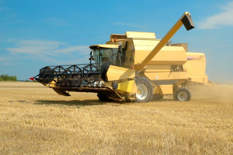 zebrać maszynę, pole kukurydzy obraz royalty free