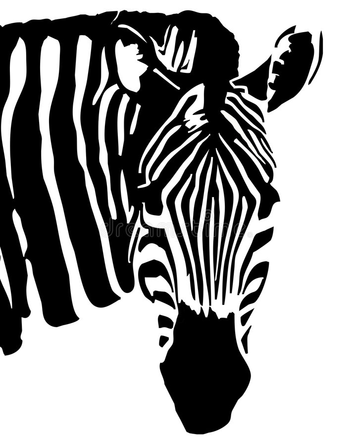 Zebra royalty illustrazione gratis
