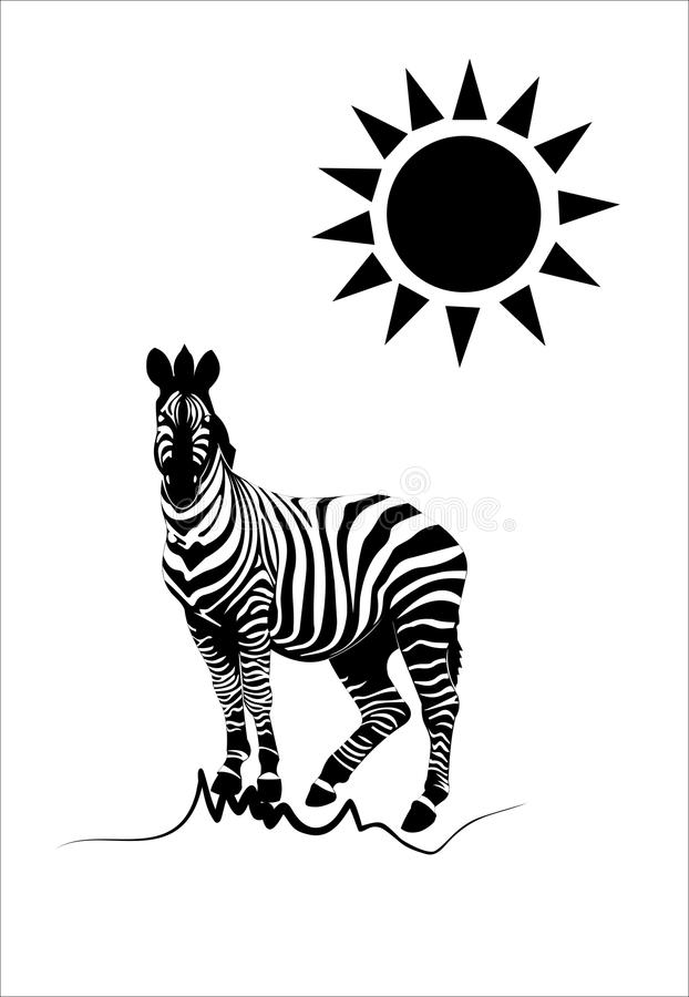 Download Zebra stock vector. Image of black, funny, nature, horse - 25007245