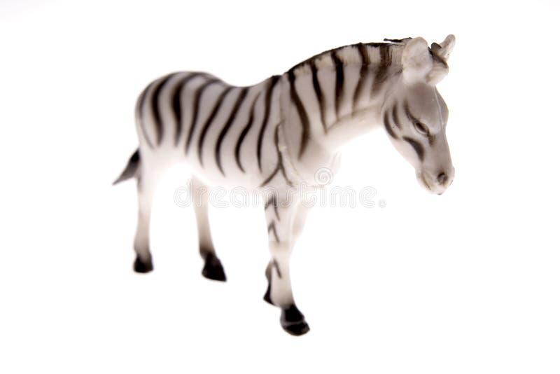 Download Zebra Stock Photo - Image: 3344760