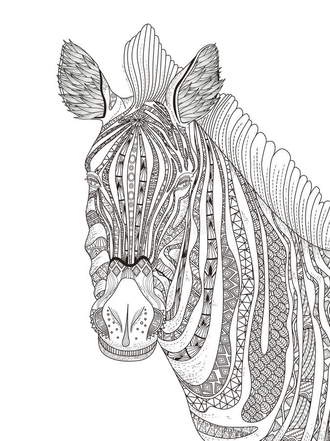 Zebra Adult Coloring Page Stock Illustration Illustration