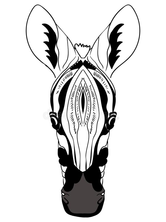 Zebra Coloring Pages - GetColoringPages.com   900x675
