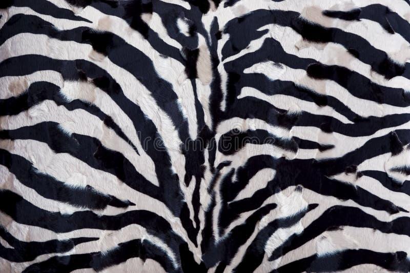 Zebra Background Stock Photo Image Of Skin Striped Coat