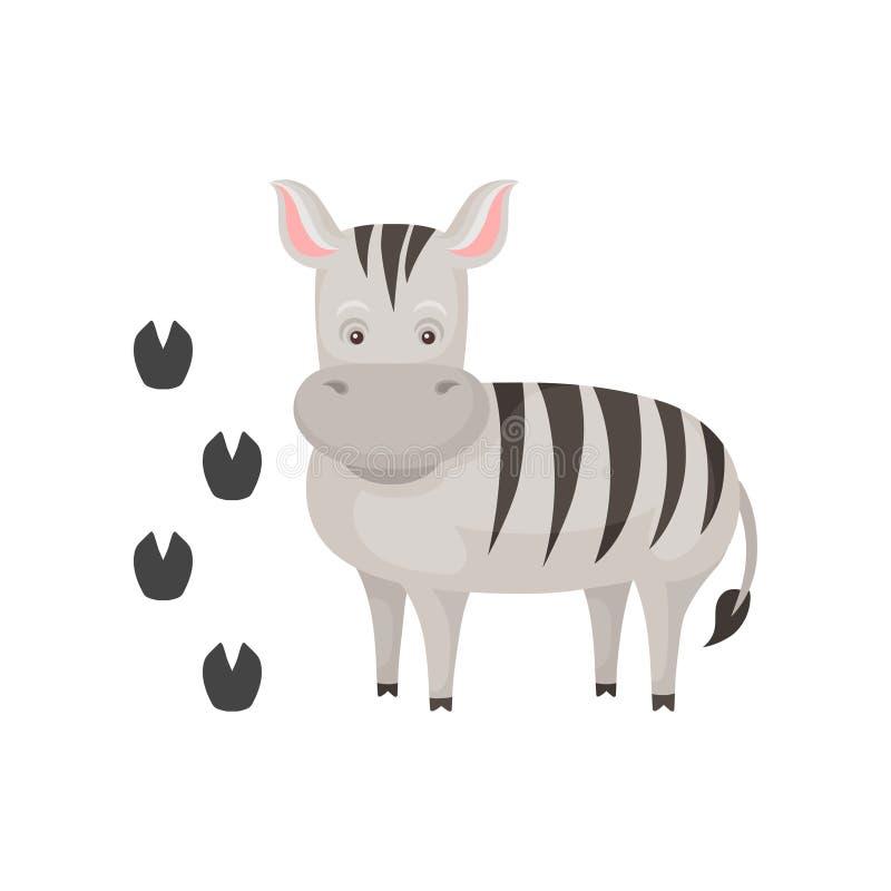 Zebra bonito e suas pegadas Personagem de banda desenhada do animal africano selvagem com listras preto e branco Tema do jardim z ilustração stock