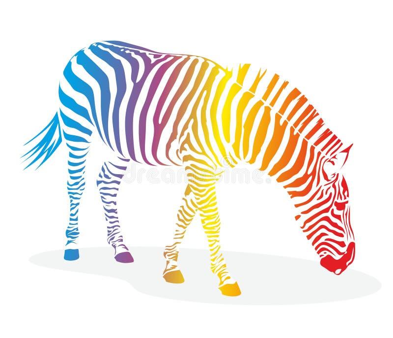 Zebra com listras ilustração royalty free