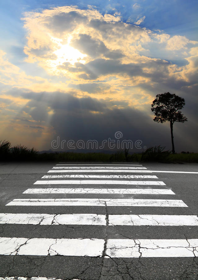 Free Zebra Crossing Road Royalty Free Stock Photography - 19533557