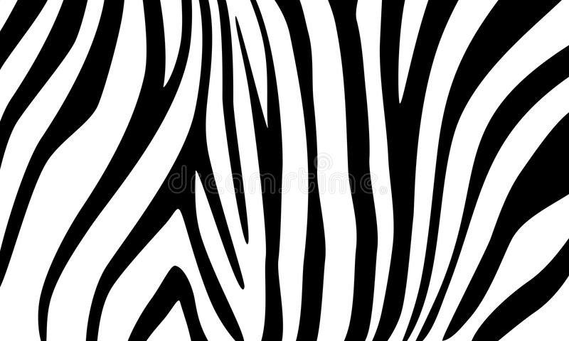 Zebra. Decorative background for design royalty free stock image