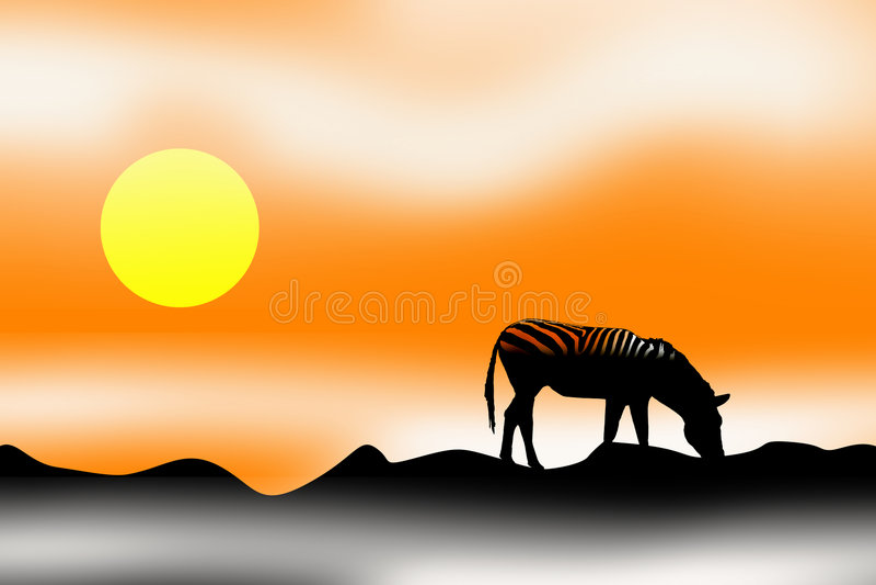 Zebra do por do sol do nascer do sol ilustração stock