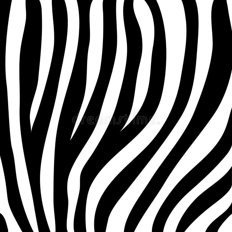 Zebra druk, zwierz?ca sk?ra, czarny i bia?y lampasy, wektor ilustracji
