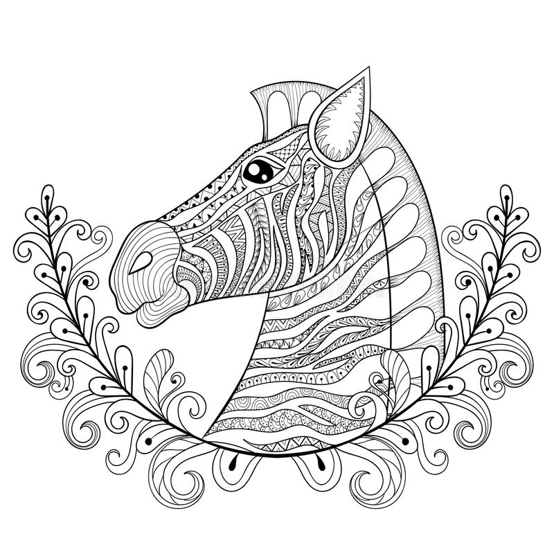 Zebra in Floral frame. Vector zentangle Zebra Head illustration, Horse print for adult anti stress coloring page. Hand drawn royalty free illustration