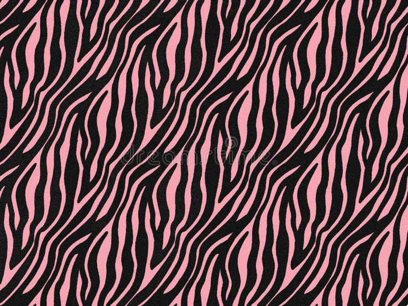 Zebra fur skin seamless pattern, carpet zebra hairy background, pink rose texture, look smooth, fluffly and soft. royalty free illustration