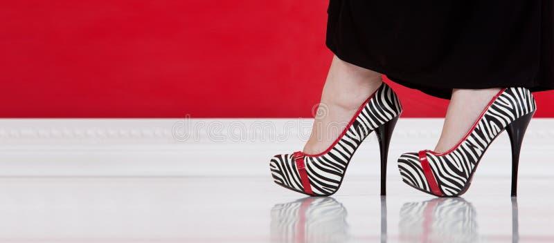 Download Zebra high-heeled shoes stock image. Image of elegance - 23877843