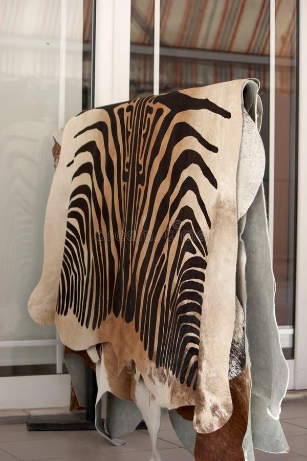 Zebra Hyde Royalty Free Stock Photo