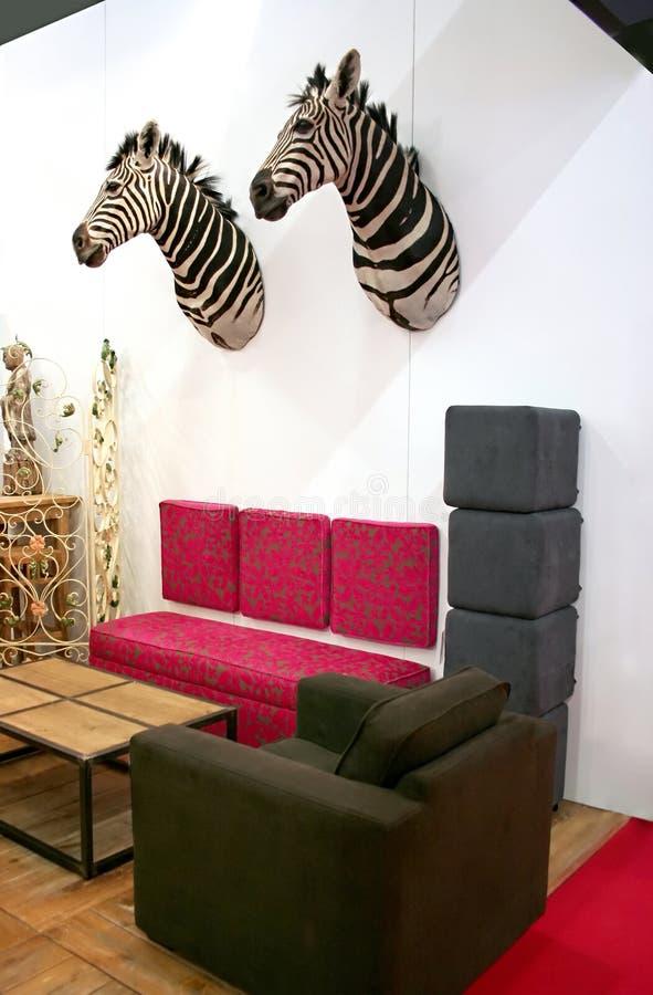 Zebra im Innenraum lizenzfreie stockfotos