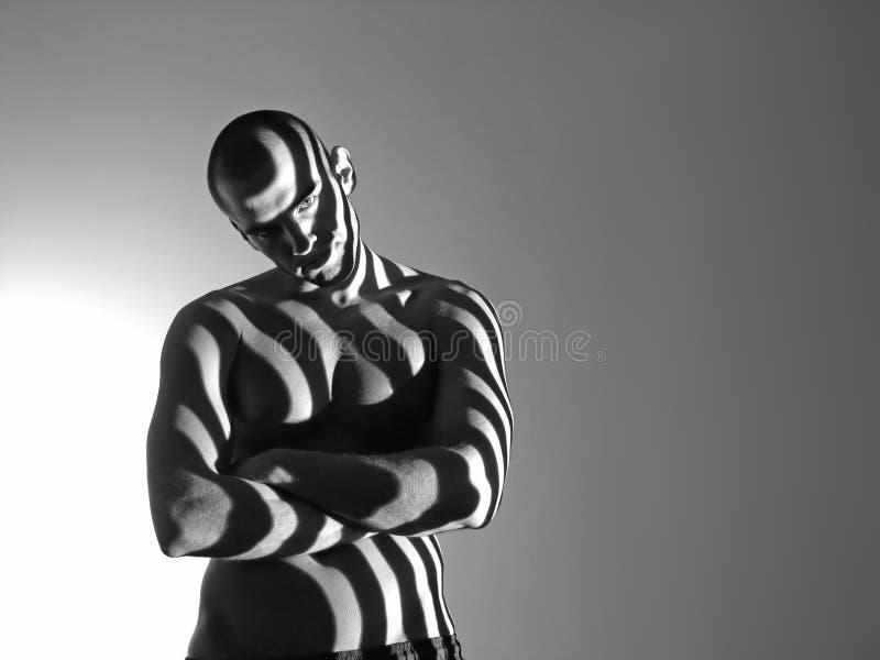 Zebra Man Stock Photos
