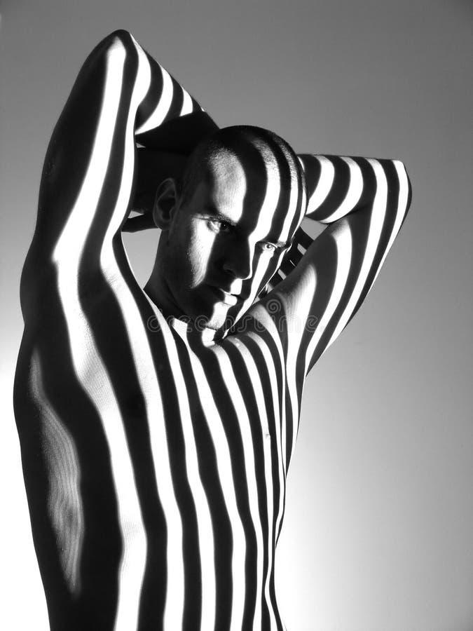 Zebra-Mann lizenzfreie stockbilder