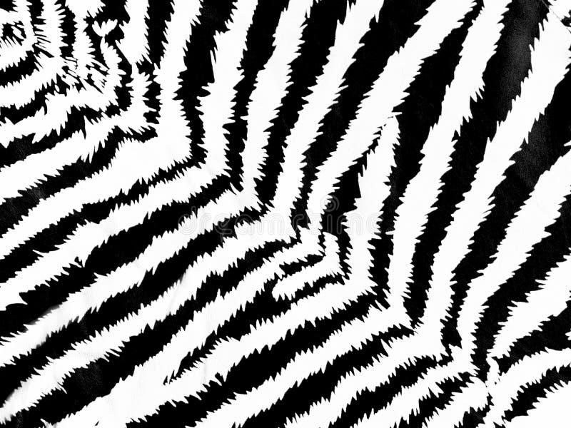 Download Zebra pattern stock photo. Image of background, draw - 11353634