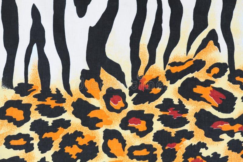 Zebra pattern animal wild cat leopard royalty free stock image