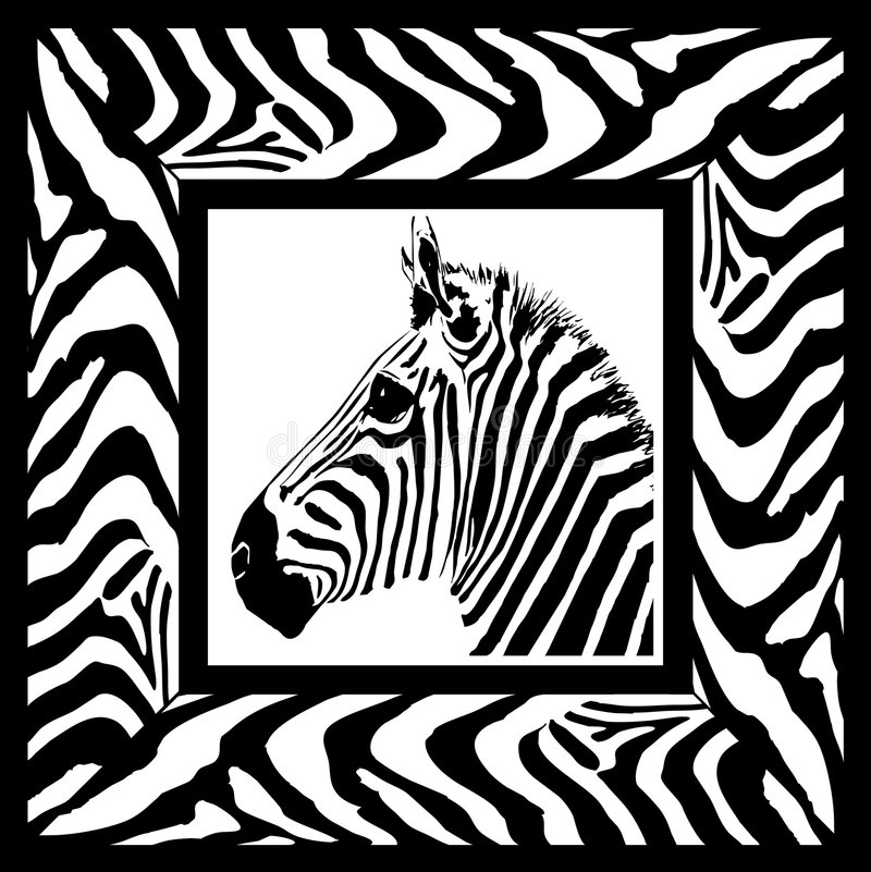 Download Zebra pattern frame stock vector. Image of animal, exotic - 1041530
