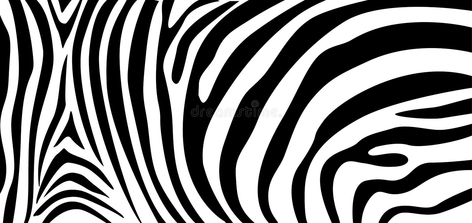Zebra pattern texture repeating. Simple pattern, black line for textile design fabric. vector illustration