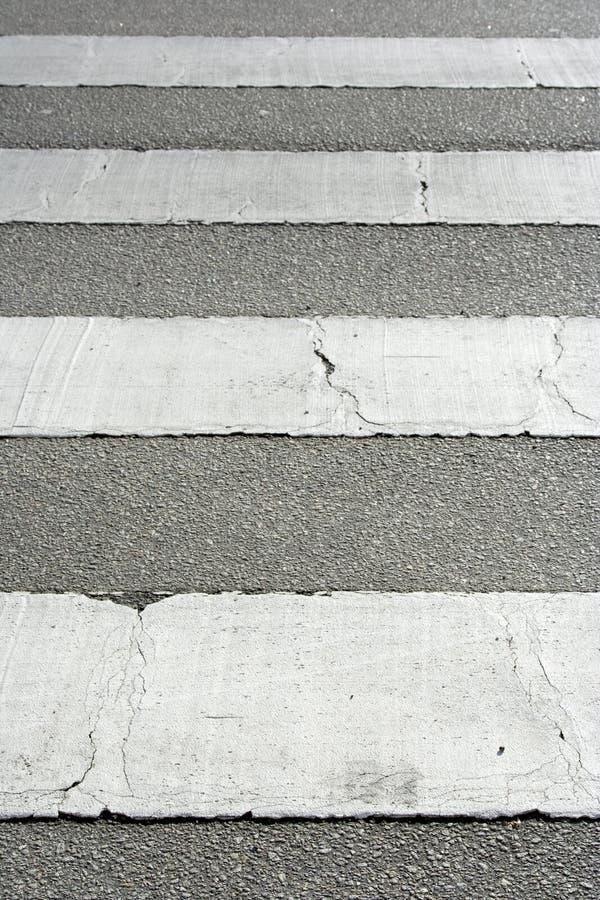 Free Zebra - Pedestrian Road Stock Photos - 3989473